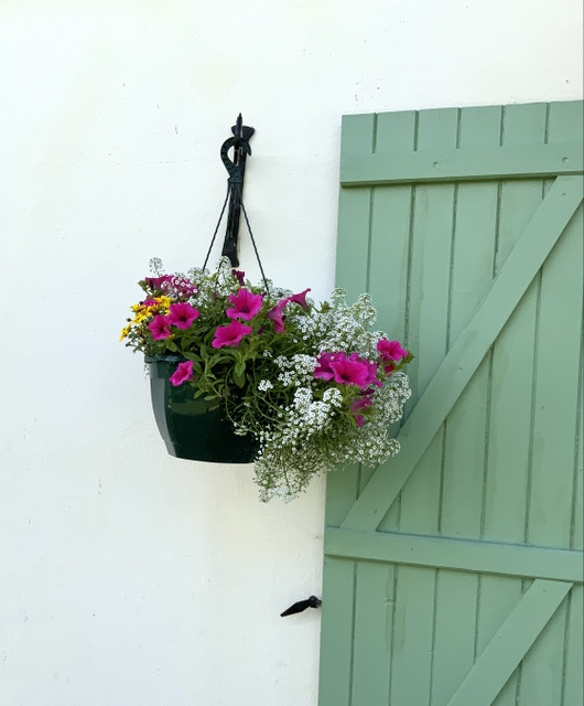 Floral hanging basket, pink petunias and pretty white flowers